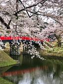 日本 平成時期的最後櫻花...2019:F6EDE70E-C8C8-4405-AD09-55C7074841E2_調整大小.jpg