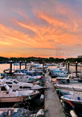 漁人碼頭:IMG_20200823_182743_調整大小.jpg
