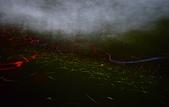 華梵大學 螢火蟲之夜:DSC_0172_調整大小.JPG