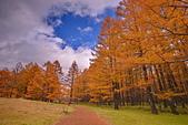 三本松茶屋(Sanbonmatsu chaya Ecotourism Center):DSC_0300_調整大小.JPG