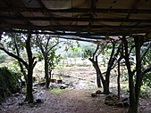 金溪景觀-11-7:DSC00881.JPG