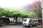 北新莊露營:IMG_0664.JPG