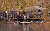 劍橋河畔:DSC_0642_調整大小.JPG