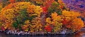 中禪寺湖 楓景:DSC_0065_調整大小.JPG