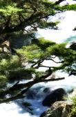 福壽山農場,合歡溪: