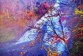 楓之 湯瀧瀑布:DSC_0181_調整大小.JPG