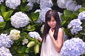 繡球花ˊ習拍:DSC_0557_調整大小.JPG