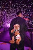 板橋 耶誕城2018:DSC_0136_調整大小.JPG