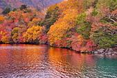 中禪寺湖 楓景:DSC_0167_調整大小.JPG