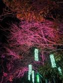 石岡 花漾藝術燈會:IMG_20210212_205322_調整大小.jpg