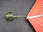 雨中的平湖-人物:DSC02399.JPG