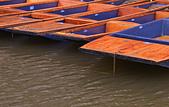 劍橋河畔:DSC_0666_調整大小.JPG