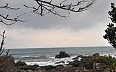 2-11-海:DSC_0222.JPG