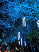 石岡 花漾藝術燈會:IMG_20210212_205324_調整大小.jpg