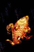 鯉魚燈:DSC_0519_調整大小.JPG
