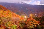 日光 男體山 瞭望台:DSC_0513_調整大小.JPG