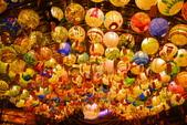 2020閃漾 大都會公園 花燈:DSC_0199_調整大小.JPG