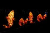 鯉魚燈:DSC_0520_調整大小.JPG