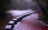 遊山玩雪  陽明山 二子坪:
