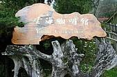 太平山11-5-98:IMG_0618.JPG