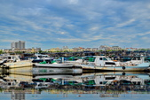 安平小漁港:DSC_4620_調整大小.JPG