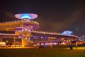 2020閃漾 大都會公園 花燈:DSC_0248_調整大小.JPG