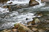 金溪景觀-11-7:IMG_0239.JPG