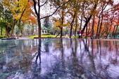 雨後的公園:
