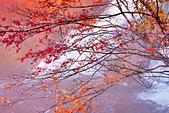 楓之 湯瀧瀑布:DSC_0173_調整大小.JPG