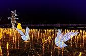 鴨子公園:IMG_20201221_180257_調整大小.jpg