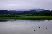 剪山水農場1-2-2010:IMG_0117.JPG
