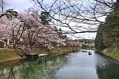 日本櫻花見:9B5ECC04-8A37-4040-92C9-C50C2D324C19_調整大小.jpg