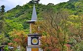 台北 奧萬大 槭紅:DSC_0127_調整大小.JPG