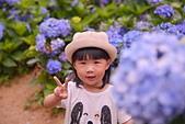 繡球花ˊ習拍:DSC_0239_調整大小.JPG