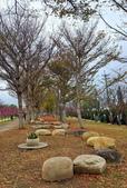中科崴立櫻花公園 櫻花賞:IMG_20210212_163425_調整大小.jpg