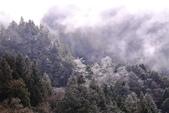 雪祭 太平山莊: