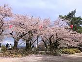 日本櫻花見:010F9D23-EB73-4569-B008-C48550235005_調整大小.jpg