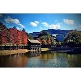 湖岸落羽松 原住民文化主題公園:https://www.youtube.com/watch?v=MXzsWfHV7Co