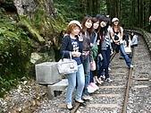 太平山11-5-98:IMG_0550.JPG