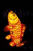 鯉魚燈:DSC_0522_調整大小.JPG