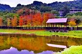 2019 原住民文化公園:DSC_0022_調整大小.JPG