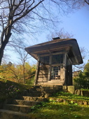 弘前公園 櫻花祭 花見:5FE2630F-102B-44FA-9D17-91EA69880966_調整大小.jpg