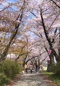 日本櫻花見:5D0F357E-AD62-4F31-9DB2-D0A905E7n2140_調整大小.jpg