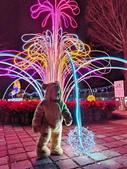 石岡 花漾藝術燈會:IMG_20210212_210827_調整大小.jpg