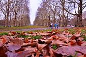 英國 白金漢宮 公園:DSC_0095_調整大小.JPG