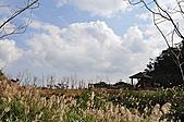 風景-平湖12-18:173114870_l.jpg