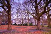 英國 白金漢宮 公園:DSC_0137_調整大小.JPG