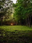 華梵大學 螢火蟲之夜:DSC_0175_調整大小.JPG