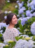 午後陽光 繡球花田:DSC_0797_調整大小.JPG