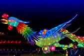 2020閃漾 大都會公園 花燈:DSC_0284_調整大小.JPG